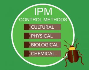 Carlsbad moves forward with new and improved Integrated Pest Management plan